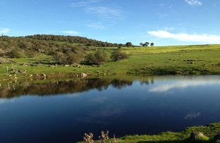 Picture of Lot 25 Boundary Rd, Boston SA 5607