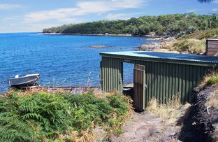 Picture of Boat Shed - Apex Point Road, White Beach TAS 7184
