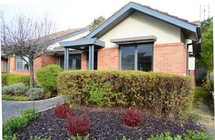 Picture of 6 Sutton Ln/8-32 Murray Street, Colac VIC 3250