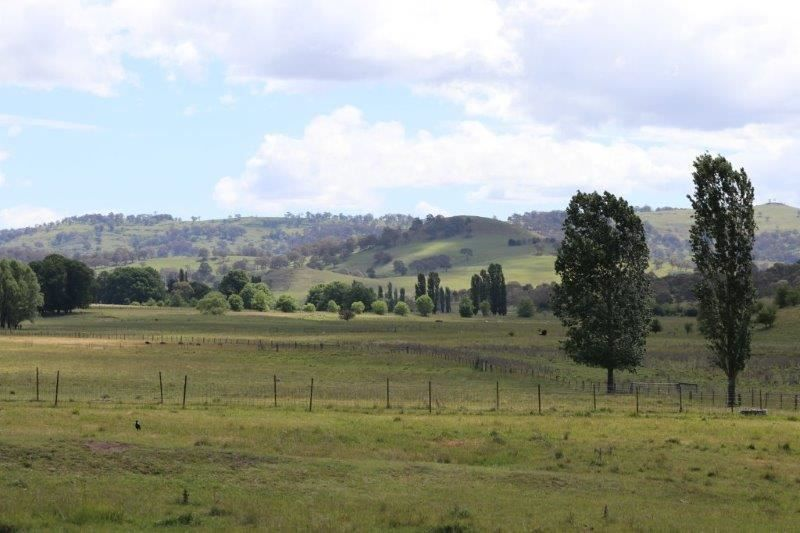 'Camlea'/3214 Mount Mitchell Road, Glencoe NSW 2365, Image 0