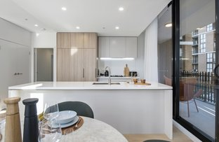 Picture of 7 Maple Tree Road, Westmead NSW 2145