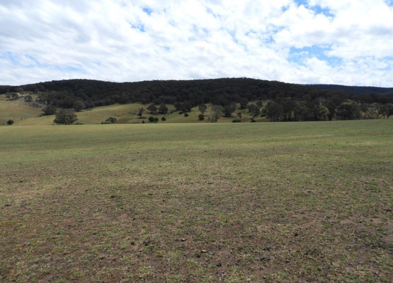 Lot 1 Towrang Road, Towrang NSW 2580, Image 2