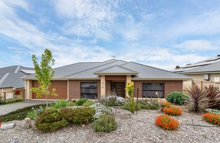 Picture of 5 Mooney Circuit, Nairne SA 5252