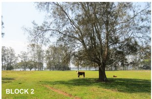 Picture of 1591 Manning Point Road, Mitchells Island NSW 2430