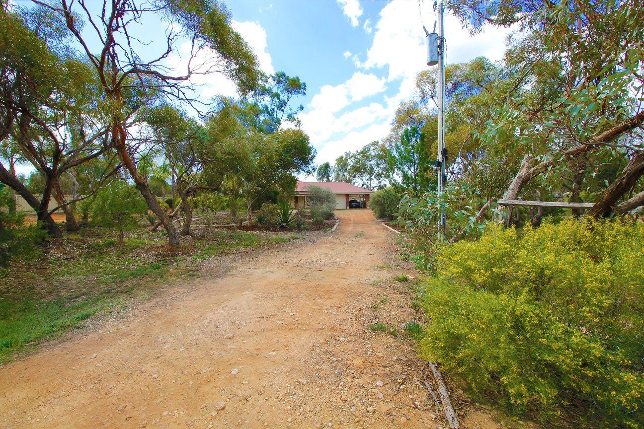 97 Badcoe Road, Loxton SA 5333, Image 0