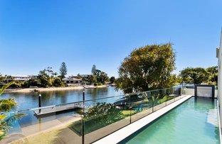 Picture of 62 Avanti Street, Mermaid Waters QLD 4218