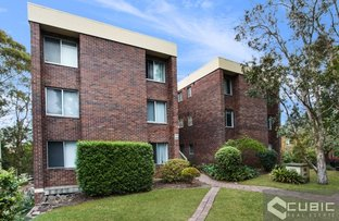 3/246 Pacific Highway, Lindfield NSW 2070