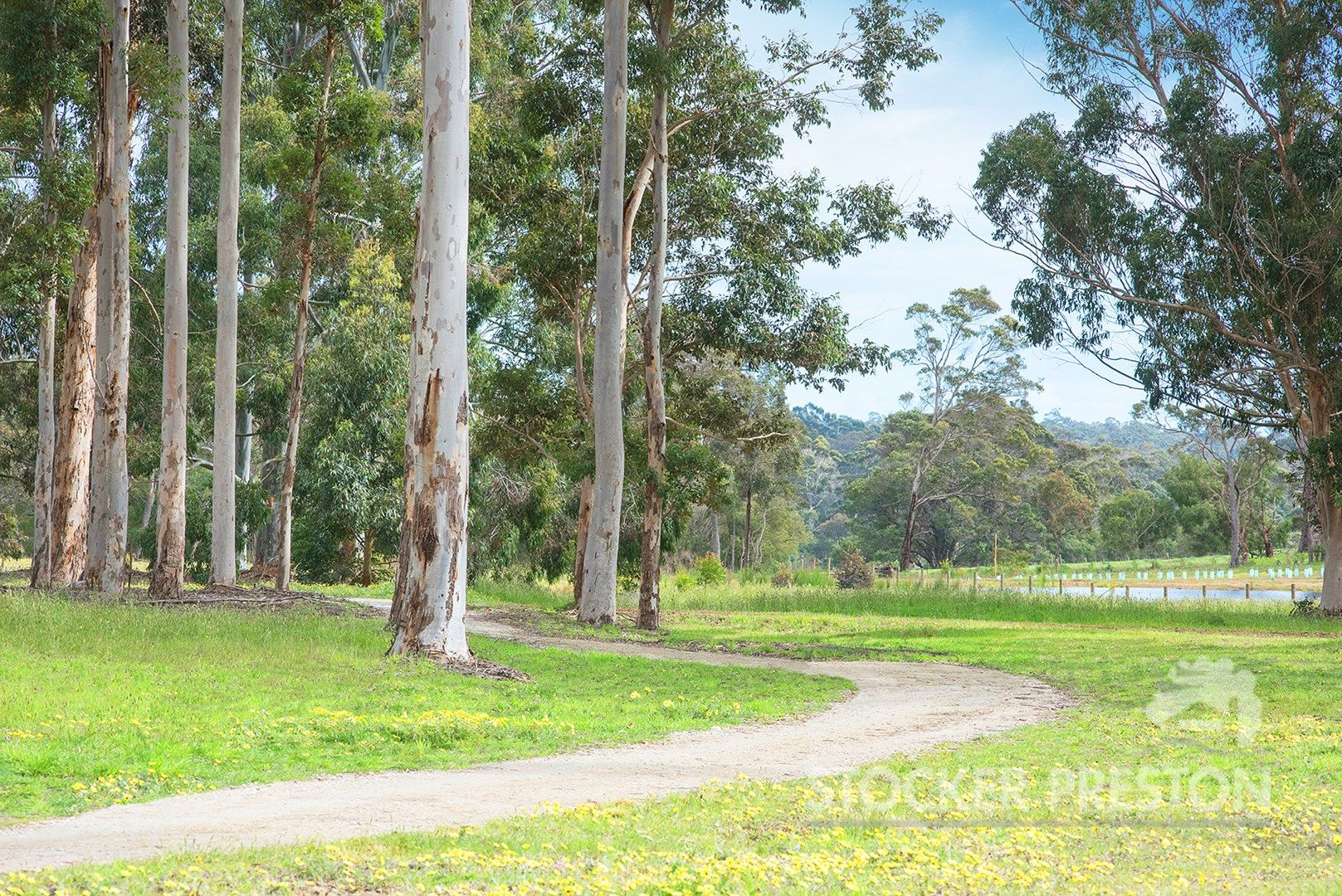 Bussell Highway, Witchcliffe, Margaret River WA 6285, Image 1