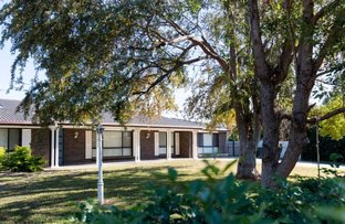 Picture of 21 BOONERY ROAD, Moree NSW 2400