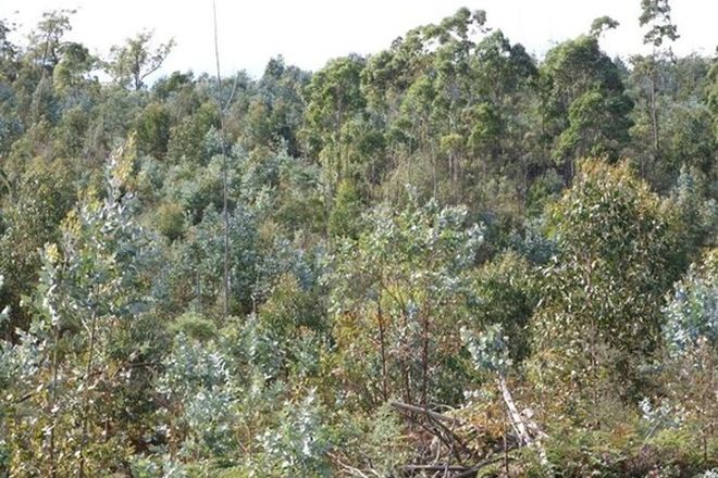 Picture of Lot 1 Woodsdale Road, LEVENDALE TAS 7120