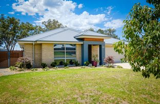 Picture of 33 Litchfield Drive, Thurgoona NSW 2640