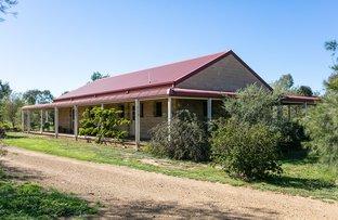 Picture of 437 Mousehole Lane, Bowan Park NSW 2864