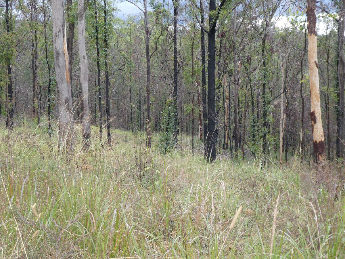 12 Paddys Flat Road, Tabulam NSW 2469, Image 2