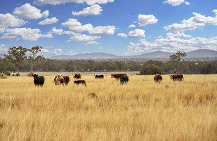"Picture of ''Part Glenroc"" Wean Road, Gunnedah NSW 2380"