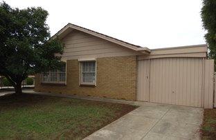 Picture of 1/486 Portrush Road, Linden Park SA 5065