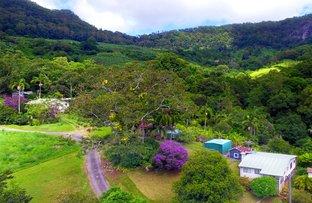 Picture of 194 Palmwoods Road, Palmwoods NSW 2482