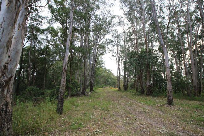 Picture of Lot 178 Lorne Rd, Batar Creek via, LORNE NSW 2439