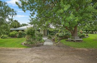 Picture of 99 Rigbys Road, Ecklin South VIC 3265