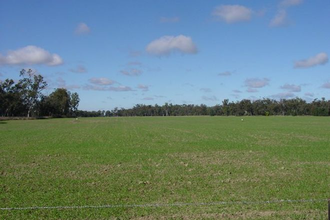Picture of . Texas - Yelarbon Road, YELARBON QLD 4388