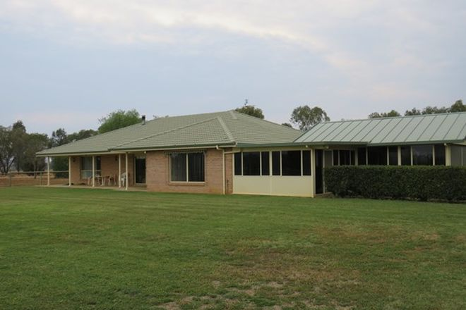 Picture of 'Holbrook' 520 Burgmans Lane, TAMWORTH NSW 2340