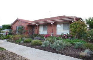 Picture of 1/146 Barnes Boulevard, Horsham VIC 3400