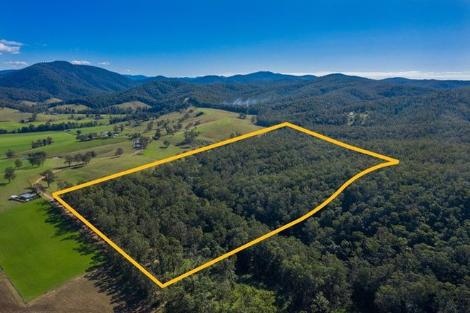 Picture of 168 Littles Loop Road, UPPER ROLLANDS PLAINS NSW 2441