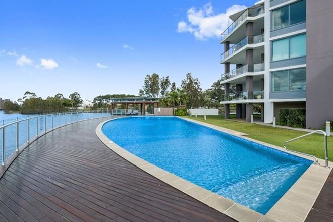 Picture of 203/22-24 Ben Lexcen Place, ROBINA QLD 4226
