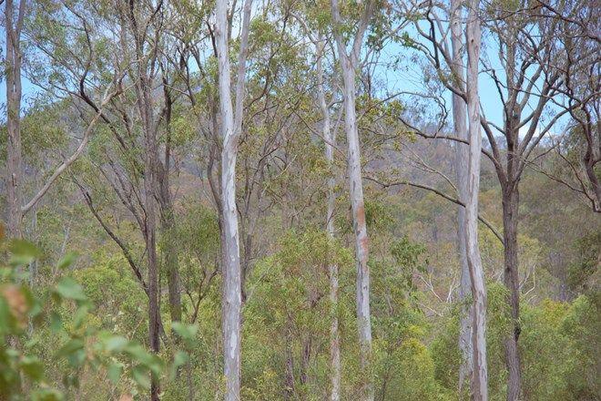 Picture of Lot 48 Lowmead Road, LOWMEAD QLD 4676