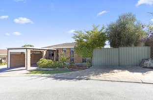 Picture of 8 Rosewood Heights, Craigie WA 6025