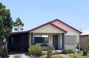 Picture of 115 Lorikeet Avenue, Burpengary East QLD 4505