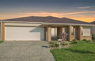 Picture of 13 Elderflower Circuit, Griffin QLD 4503