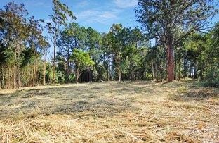 Picture of Lot 2 & 3 Ron Banks Road, Herons Creek NSW 2439
