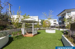 Picture of 31/6 Cunningham STREET, Griffith ACT 2603