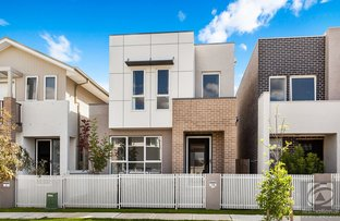 Picture of 10 Peppin Street, Rouse Hill NSW 2155