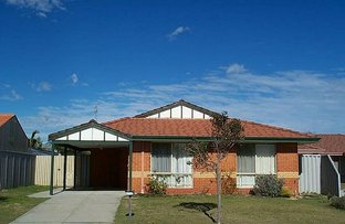 Picture of 11 Goroka Grove, Ballajura WA 6066