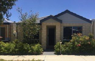 Picture of 7 Conferta Link, Banksia Grove WA 6031