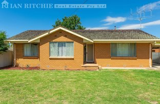 Picture of 323 Balston Street, Lavington NSW 2641