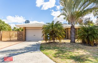 Picture of 13 Gear Court, Middle Swan WA 6056