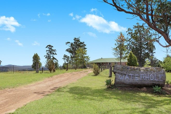 Picture of 258 Waterhole Road, ROLLANDS PLAINS NSW 2441