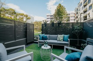 Picture of 135/349 George Street, Waterloo NSW 2017