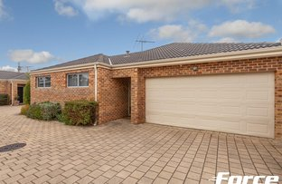 Picture of 740C Karrinyup Road, Balcatta WA 6021
