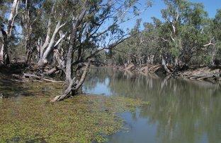 Picture of 3724 Deniliquin-Wakool Road, Deniliquin NSW 2710