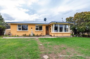 Picture of 1207 Royal George Road, Avoca TAS 7213