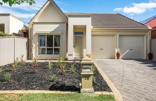 Picture of 28 Karawirra Avenue, Rostrevor SA 5073