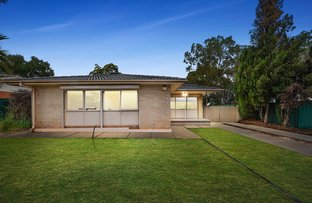 Picture of 2 Burford Street, Elizabeth Downs SA 5113