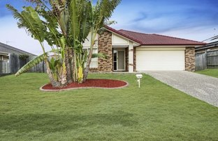 10 Bluetail Crescent, Upper Coomera QLD 4209
