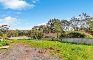 Picture of 10a Currawong Crescent, Coromandel Valley SA 5051