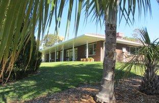 100 Kooroogamma Road, Moree NSW 2400