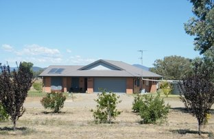 Picture of 188 Borah Creek Rd, Quirindi NSW 2343