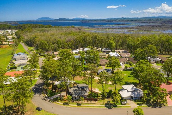 Picture of 17 Wonga Crescent, PORT MACQUARIE NSW 2444